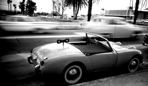Palm-Springs.-Doisneau.1